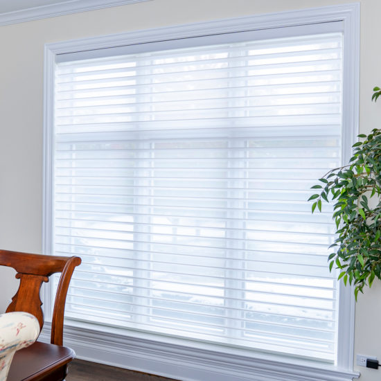 Silhouette® with EasyRise™